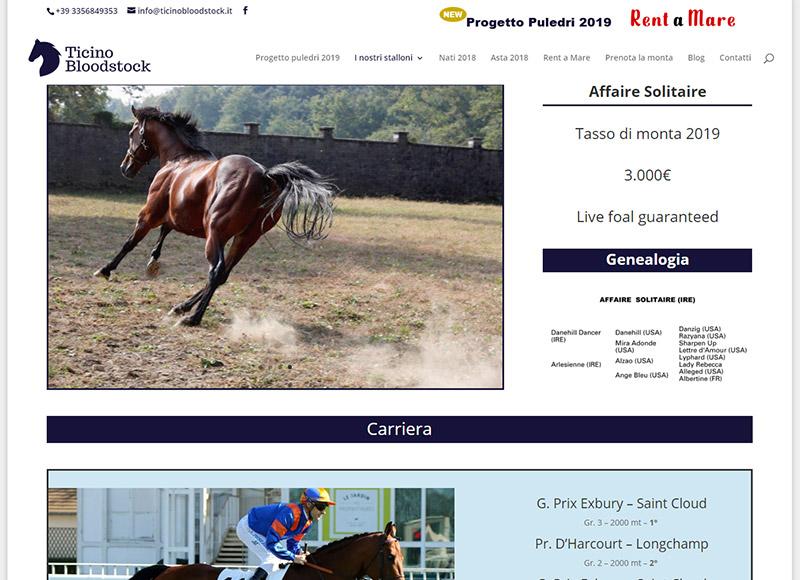 Realizzazione sito web per azienda specializzata nell'allevamento e vendita di cavalli